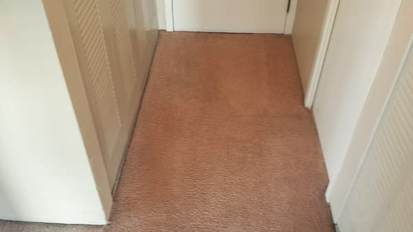 Sky Rise Carpet Cleaning Denver